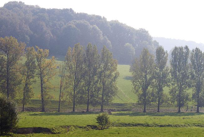 natuur vakantie zuidlimburg fietsvakantie B&B VerdeSud